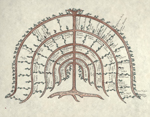 Family Tree low res
