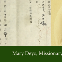 mary deyo header draft with passport 2.jpg